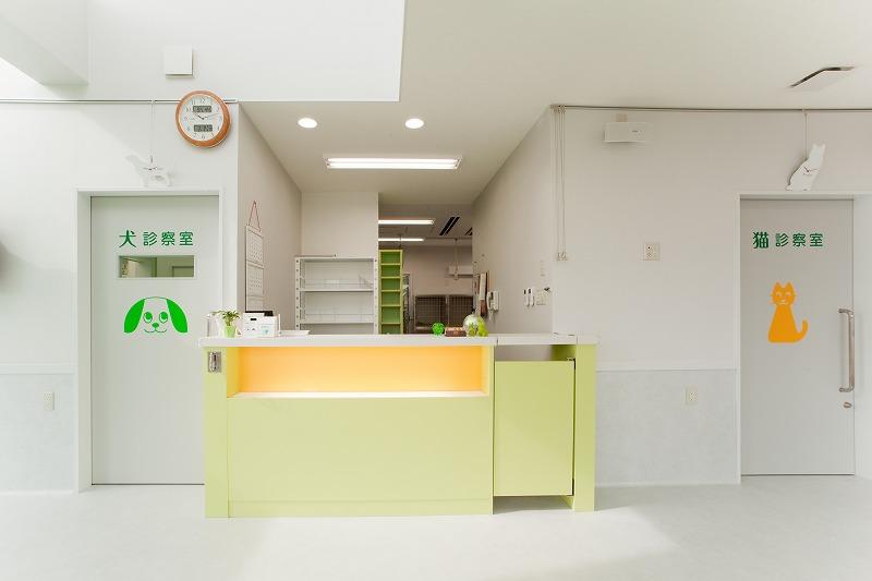 犬猫病院ゆいまーるphoto